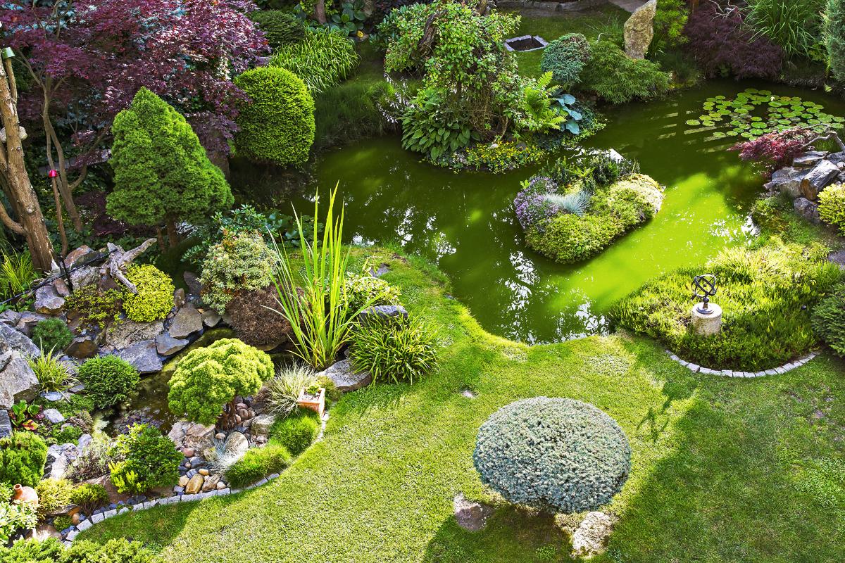 Návštěva zahrady: Poetické zastavení času