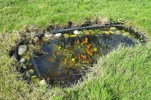 Výběr správného místa pro umístění vodní plochy je naprosto zásdadní, neboť ovlivňuje další život zahrady