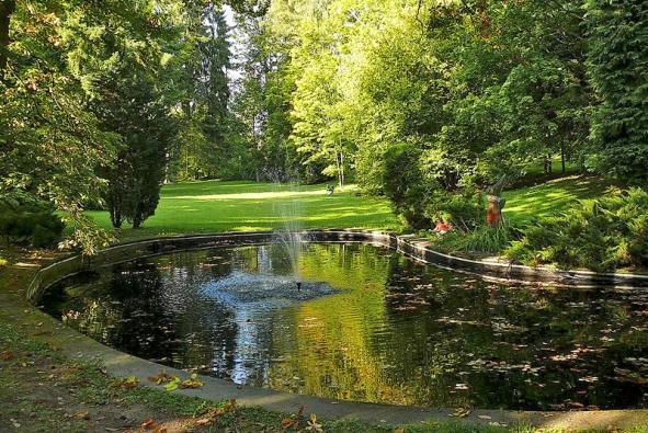 Vodní plochy by neměly chybět v žádné zahradě