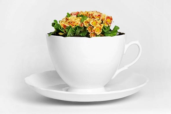 Květináč jako obří šálek (THORSTEN VAN ELTEN), k dostání v DOX BY QUBUS. Orientační cena 6 900 Kč