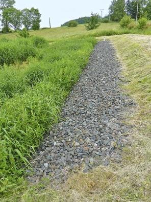 Okraj jednoho kořenového pole obecní čističky odpadních vod ve Zbenicích, okres Příbram. Čistička je dimenzována pro 200 obyvatel abez problémů pracuje již mnoho let
