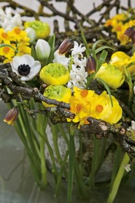 Kruh zvětviček adrátu vytváří přírodní podpěru pro výrazné jarní aranžmá spryskyřníkem vhlavní roli (Ranunculus, Hyacinthus, Narcissus, Fritillaria, Tulipa, Anemone).
