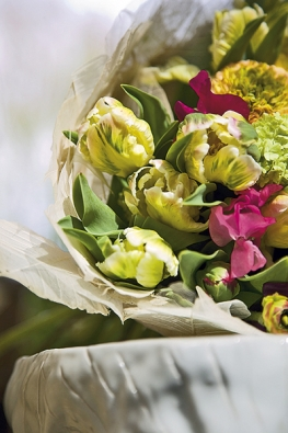 Něžně barevnou kytici zvýrazňují fialové atmavě růžové hrachory. Bílé skeletové listy tvoří přírodní manžetu (Tulipa, Lathyrus, Viburnum).