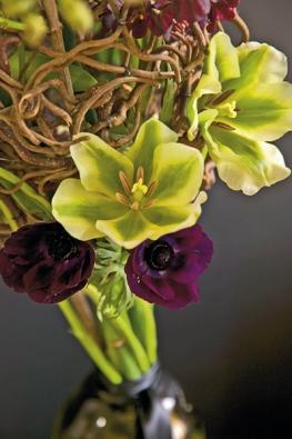 Decentní klasická barva květin – zelenobílá – vkombinaci sproutím (Tulipa, Anemone).