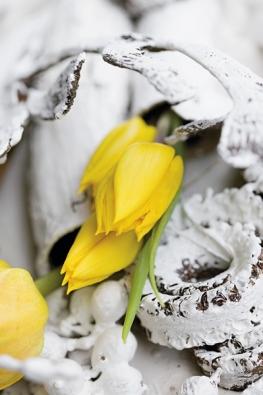 Váš domov se může proměňovat stejně jako příroda. Stačí vybrat květiny arostliny.