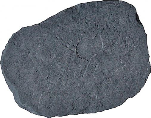 Nášlapné kameny Dakar sbřidlicovým povrchem jsou vhodné pro samostatné zahradní cestičky nebo přechody například kzáhonům nebo ke studním (PRESBETON).
