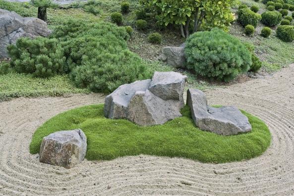 Jehličnany bývají součástí výsadeb ve stylu japonských ačínských zahrad.