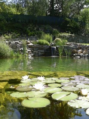 Stavba přírodního koupání je často mnohem náročnější počin nežli bazén. Je to dáno velkým podílem ruční práce stěžkým materiálem, jako je například kámen.