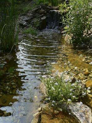 Mít vlastní potok na zahradě není při dnešní technice velký problém. Tekoucí voda je jeden znejvíce působivých prvků zahrady. Při vhodné konstrukci jej mohou využívat iděti kvodním hrátkám.