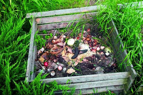 Aby kompost správně zrál, měli byste vědět,  co všechno nakompost patří aco je lepší přenechat popelnici.