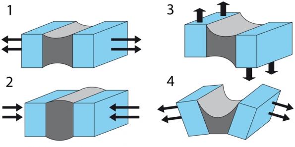"""Jednou zvynikajících vlastností silikonu je jeho pružnost, kterou odolává silám působícím na okolní konstrukci. Jednotlivé obrázky znázorňují správné působení silikonu ve spáře, který tam odolává  deformacím vtahu (1), tlaku (2), střihu (3) a""""nůžkovém"""" rozpínání (4) (Z-Trade)."""