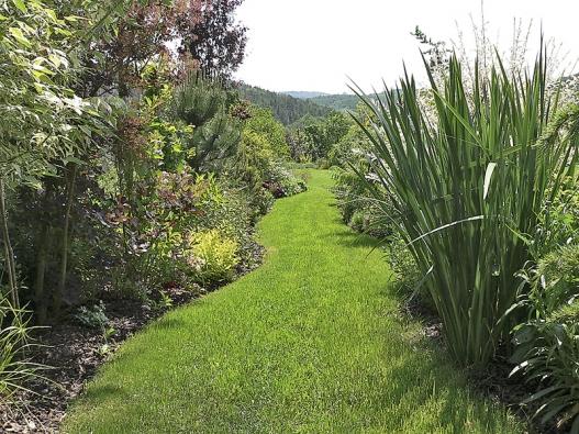 Trávníková cesta láká k vycházkám do zahrady.