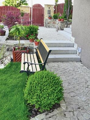 Kulovité zimostrázy dotvářejí atmosféru zahrady avnášejí do ní spolu sdalšími prvky jistý řád arytmus.