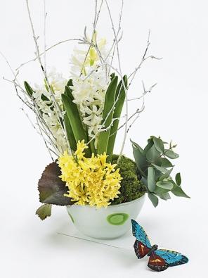 Žlutý hyacint seřízněte nakrátko azapíchněte ho do pěnové hmoty vpřední části aranžmá. Jako tečku připevněte kbřezové větvičce motýla.