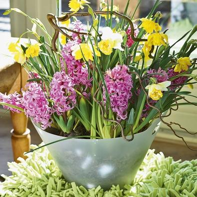 Narcisy zkombinované srůžovými hyacinty avětvičkami lísky navodí náladu prvních prosluněných jarních dnů.