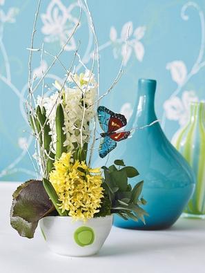 Jarní aranžmá se dvěma druhy hyacintu rozveselí aprovoní domov ikancelář.