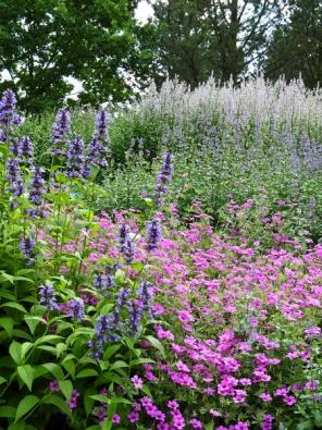Pokud vsadíte na barevný kontrast, mějte na paměti, že kontrasty iharmonie barev vyniknou jen tehdy, když zvolíte současně kvetoucí druhy.