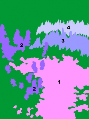 1l Kakost Endresiův (Geranium endressii) 2l Šanta (Nepeta kubanica) 3l Šanta kočičí (Nepeta x faassenii)  4l Šanta (Nepeta subssesilis).