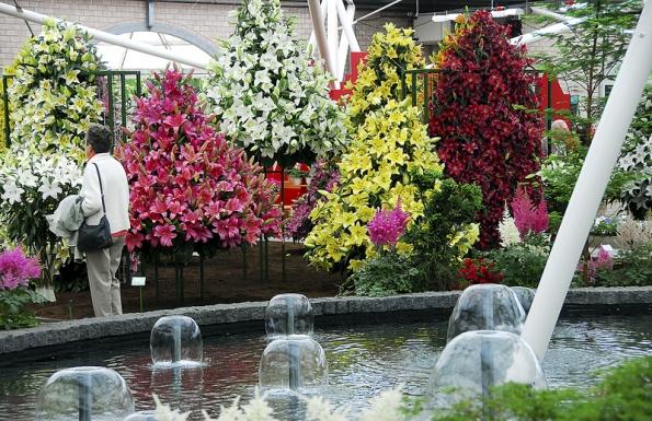 VKeukenhofu můžete navštívit iněkolik skleníků, kde shlédnete nejlepší výpěstky zdejších zahradníků.