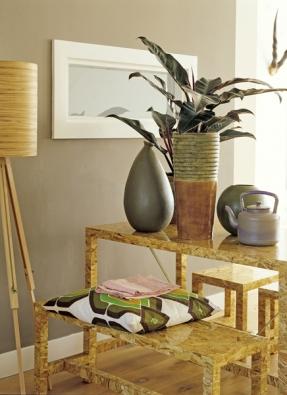 Vhydroponii bude skvěle prospívat také filodendron, dobře bude vypadat vhrubším keramickém květináči.