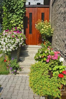Dobře zalévané ahnojené nádoby skvetoucími rostlinami zázračně promění každý dům.