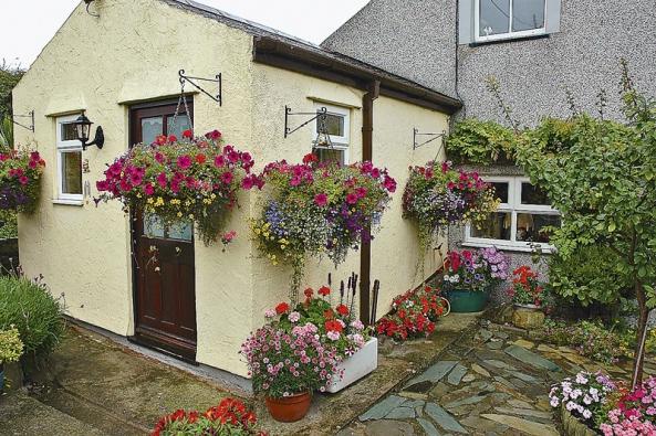 Bohatě kvetoucí jednoleté i vytrvalé rostliny okrášlí i nepříliš hezký dům.