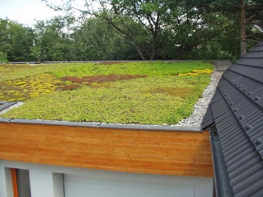 Extenzivní zelená střecha je nejlevnější azároveň inejméně náročná na údržbu. Předpokladem funkčnosti je malý sklon ařemeslně perfektní založení.