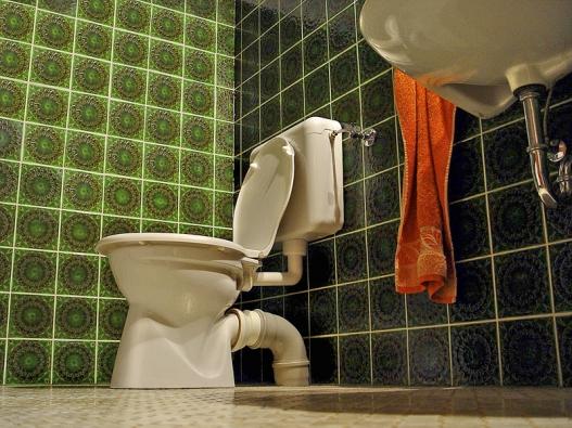 Čištění odpodního potrubí WC nebývá věc ani příjemná, ani jednoduchá. Nejlepší je důkladná prevence.