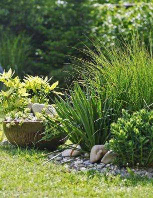 Kombinace vhodně vybraných rostlin akamenů tvoří malebná zákoutí.