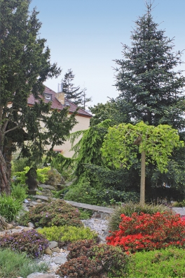 Kameny pro realizaci pocházejí zČeského krasu – jde okoněpruský vápenec, který je naprosto stabilní, mrazem se netrhá anejsou sním podle slov majitelů zahrady žádné problémy.