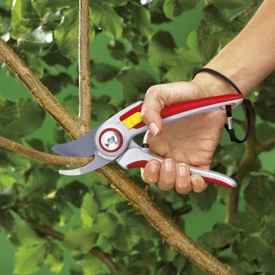 Kvalitní zahradnické nůžky jsou zárukou přesného a hladkého střihu. Při práci s nimi se navíc mnohem méně namáháte díky ergonomickému tvaru a lehkému chodu. Snažte se sříhat tak, aby se dřevina rozkošatila a zahustila, tj. aby pupeny směřovaly ven z korunky.