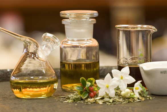 Vaše bylinková zahrádka