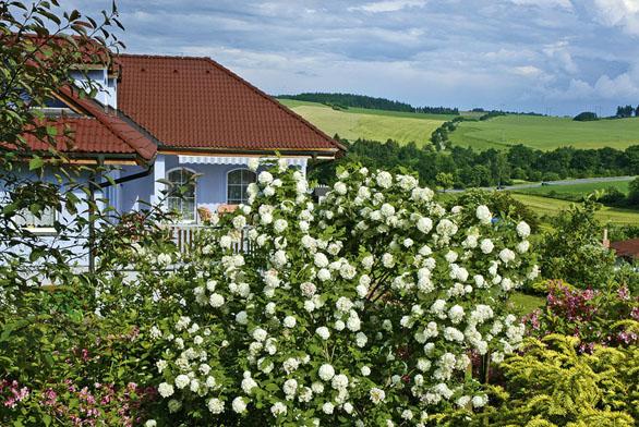 Ivtakto bujné zahradě může terasa rozkvést.