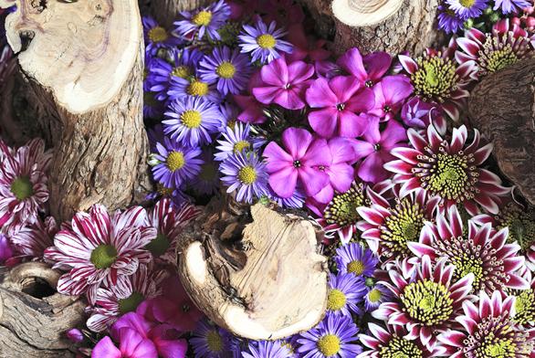 Šeříkové dřevo, květy chryzantém, astry, plamenky asušené plody pepřovníku.