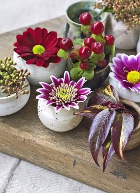 Vručně vyrobených miniaturních vázách vyniknou květiny vcelé kráse. Aranžmá tvoří tři různé květy chryzantémy, třezalka splody, barevná větvička leukotoe akvětenství blahovičníku.