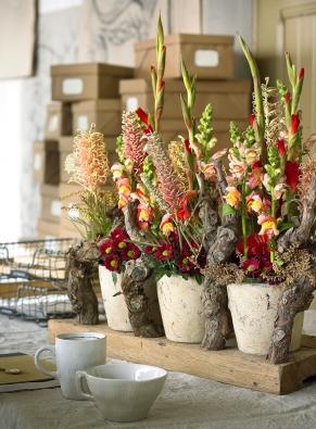 """Nemusí zůstat ujediné kytice. Když zvolíte podobné barvy, které vytváří efekt """"tón vtónu"""", můžete jich naaranžovat iněkolik vedle sebe. Bohatá dekorace, kde se vyjímají chryzantémy, hledíky, mečíky, grevilea aleukotoe, je díky květináčům avětvím zároveň příjemně robustní."""