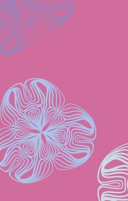 Naletošním Heimtextilu měly světovou premiéru interiérové okenní rolety, které designér Karim Rashid navrhl pro společnost Velux. Použil svou oblíbenou růžovou barvu aretro vzory.