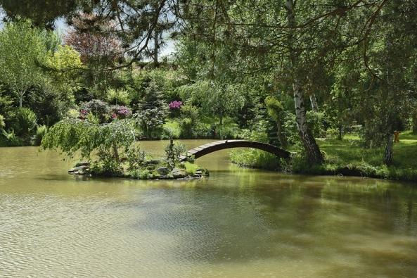 Atmosféru vytváří vodní hladina, dřevěný můstek arododendrony.