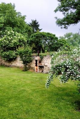 Čistotu zahrady umocňují bílé květy jasmínu ačerného bezu.