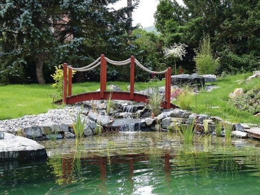 Nově založené jezírko spotokem zcela změnilo charakter staré zahrady.