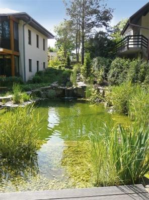 Podstatou moderního přírodního bazénu je promyšlená konstrukce amoderní technika.