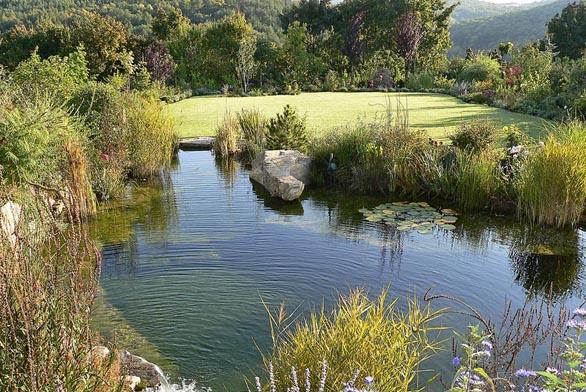 Hladina koupacího jezírka zkrášleného pestrou výsadbou na břehu vytváří se zahradou ijejím okolím dokonalou harmonii.