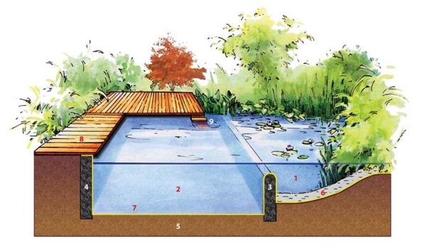 Řez moderním jezírkem vmnohém připomíná konstrukci klasického bazénu: 1) regenerační mělká zóna srostlinami 2) koupací hluboká část 3) stěna oddělující koupací aregenerační část 4) obvodová stěna 5) terén 6) štěrk pro výsadbu rostlin vmělké zóně 7) jezírková fólie (žlutá linka) 8) dřevěné molo 9) vstup do vody.