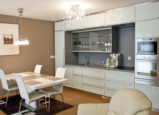 Elegantní řešení vestavěné kuchyňské linky (DELFI).
