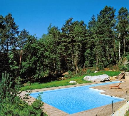 """Atypický tvar bazénu určeného kesportovním irekreačním účelům, je architektonicky zajímavě propojen s""""divokou"""" přírodou okolí (DESJOYAUX)."""
