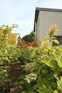 Jistou nevýhodou malých zahrad sevřených meziostatními domy může být stín či polostín. Je třeba upravit osazovací plán ahledat takové rostliny akeře, které dané podmínky dobře snášejí.