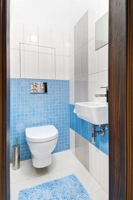 Toaleta vbytě je oddělená, taktéž obložená sérií Mikado se stejnými formáty abarevností jako vkoupelně.