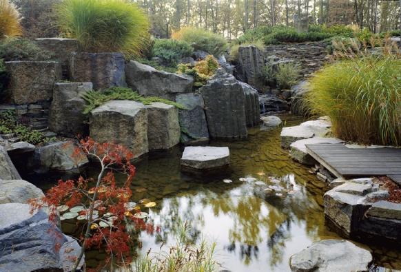 Společně sosazováním vhodných kamenů se musí vzákladním projektu pamatovat inavodu, která má vcelkové kompozici velmi důležitou roli. Vtomto pojetí má podobu poměrně malé, ale hluboké tůně zadomem ajezírka orozloze přibližně 50 metrů čtverečních. Spadají sem dva vodopády, kde pohyb vody zajišťuje speciální oběhové čerpadlo.