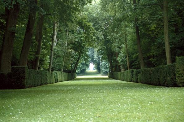 """Pro neopakovatelný pocit  prostoru vobrovských zelených """"pokojích"""", """"chodbách"""" a""""katedrálách"""" si zajeďte do tohoto zámeckého parku jižně od Paříže (Château de Courances)."""