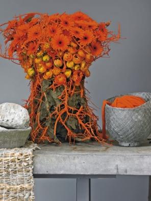 Oranžové tóny květů vám zlepší náladu.
